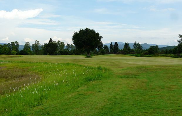 fairway, gold canyon golf club, chiang mai, thailand